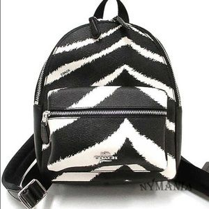 NWOT Coach zebra backpack